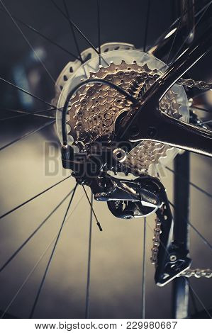 Closeup Of A Bicycle Gears Mechanism And Chain On The Rear Wheel Of Mountain Bike. Rear Wheel Casset