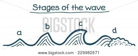 Stages Of The Waves, Surfing Theory. Vector Hand Drawn Doodle Image.