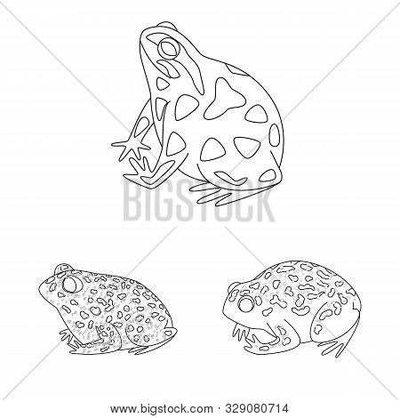 Vector Design Of Amphibian And Animal Logo. Collection Of Amphibian And Nature Stock Symbol For Web.