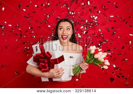 Portrait of her she nice-looking attractive glamorous lovely pretty lovable fascinating gorgeous cheerful cheery glad lady holding in hands romantic gifts isolated on bright vivid shine red background poster