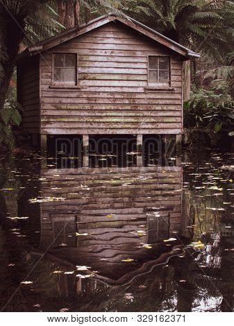 An Eerie Looking Empty Boat Shack Surrounded By Trees And Ferns With Reflection Of The Shack On The