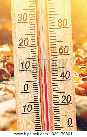Cold Autumn Weather - 10 Degrees Celsius. Thermometer In The Autumn Cold Weather In The Leaves Shows