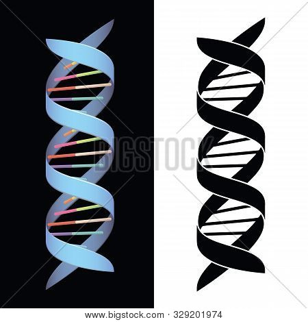 Dna Spiral Helix Isolated Vector Illustration In Both Full Color And Black
