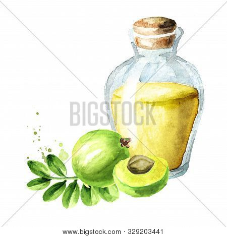 Amla Essential Oil Bottle With  Green Amla Berries, Watercolor Hand Drawn Illustration Isolated On W
