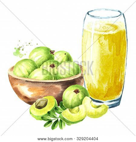Gooseberry Or Amla Juice With Fresh Ripe Fruits In The Bowl. Watercolor Hand Drawn Illustration Isol