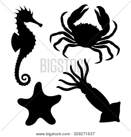 Sea Animals Icons Set. Seahorse, Starfish, Crab And Squid Graphic Signs Isolated On White Background