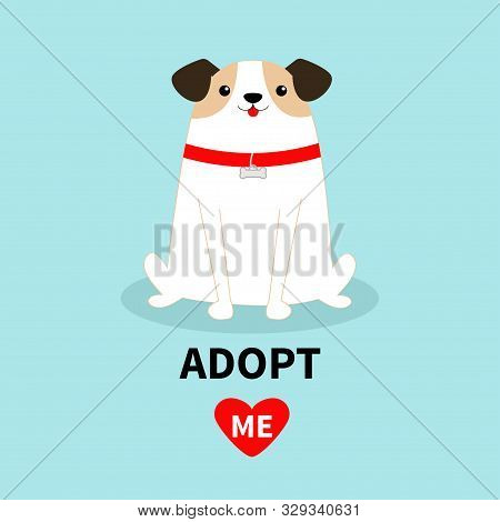 poster of Adopt me. Dog sitting. White puppy pooch. Red collar bone. Cute cartoon kawaii funny baby character. Flat design style. Help homeless animal concept. Pet adoption. Blue background. Isolated. Vector