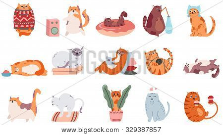 Adorable Cats. Cute Dancing Cat, Funny Angry Kitty And Love Cat Vector Illustration Set. Domestic An