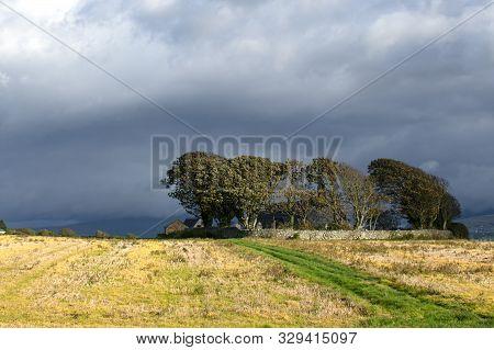 Wales - The Northern Countryside Near Caernarfon: An Autumn Day.  Dark Clouds Over A Wood With Hayfi