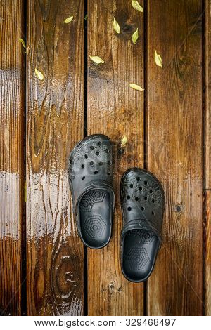 October 17, 2019 - Gibsons, British Columbia: Black Rubber Gardening Crocs Style Clog Sandals On Wet