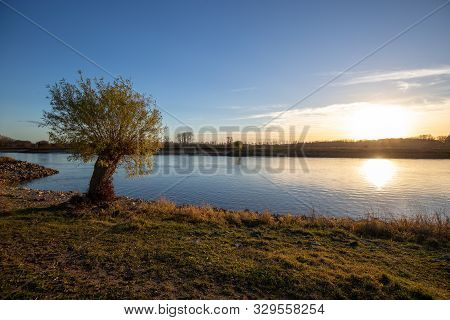Landscape Of A Lonely Tree At The Ijssel In Deventer, The Netherlands