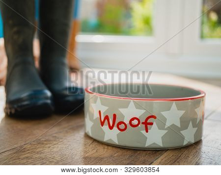 Rustic Dog Food Bowl With Walking Boots Wellies On Wooden Floor In Sunlight