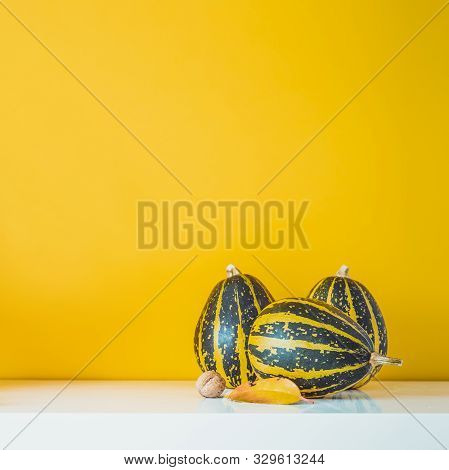 Composition Of Three Decorative Green Striped Pumpkins, Leaf And Nut On A White Table On Yellow Oche