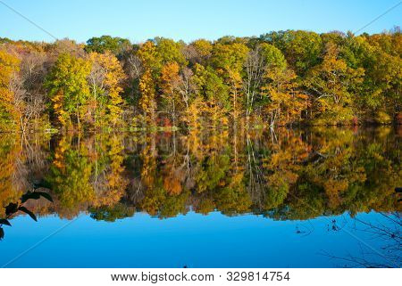 Beautiful Fall Autumn Foliage In New England Usa At Risley Park Vernon Connecticut New England