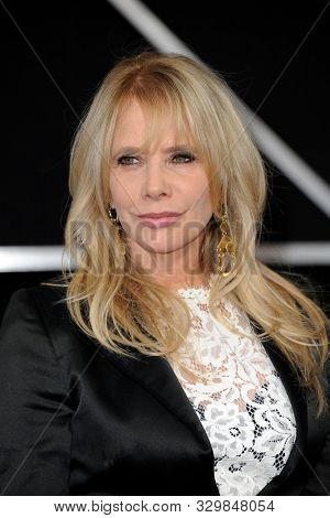 Rosanna Arquette at the Los Angeles premiere of 'The Irishman' held at the TCL Chinese Theatre in Hollywood, USA on October 24, 2019.