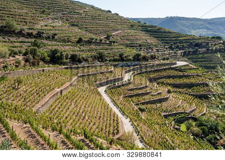 Pinhao, Portugal - 13 August 2019: Quinta Do Seixo Owned By Sandeman Offer Port Wine Tasting Tours I