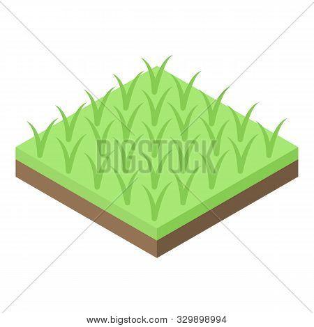 Rice Plantation Icon. Isometric Of Rice Plantation Vector Icon For Web Design Isolated On White Back