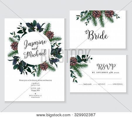 Emerald Christmas Greenery, Spruce, Fir, Pine Cones Seasonal Vector Design Frames. Woodland Simple S