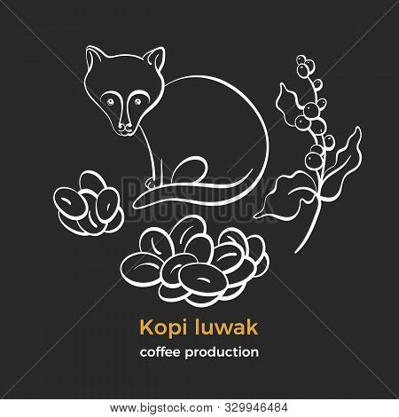 coffee kopi luwak vector photo free trial bigstock coffee kopi luwak vector photo