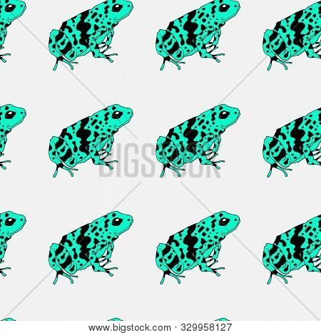 A Pattern With Poisonous Frogs. Seamless Pattern. Bright Summer Pattern. Drawing By Hand. Lovely Fro