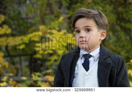 Portrait Of A Boy With Surprise On His Face On A Background Of Autumn Trees With Copy Space. A Small