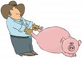 This illustration depicts a farmer pulling a large hog by its rear legs. poster