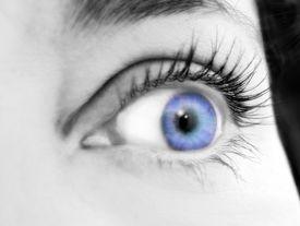 Blue Eyed Surprise