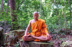 Buddha Monk Make Meditation In Deep Peace Forest