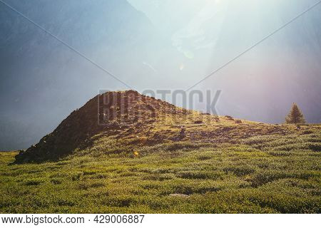 Colorful Green Landscape With Lonely Tree Near Rocky Hill On Background Of Giant Mountain Wall In Su
