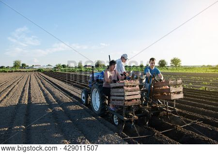Workers Are Planting Potatoes On The Field. Automation Of The Process Of Planting Potato Seeds. Agri
