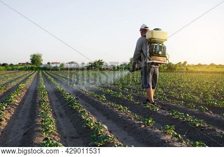 A Farmer With A Backpack Spray Sprays Fungicide And Pesticide On Potato Bushes. Protection Of Cultiv
