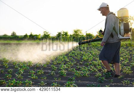 A Farmer With A Backpack Spray Treats The Plantation With Pesticides. Protection Of Plants From Inse