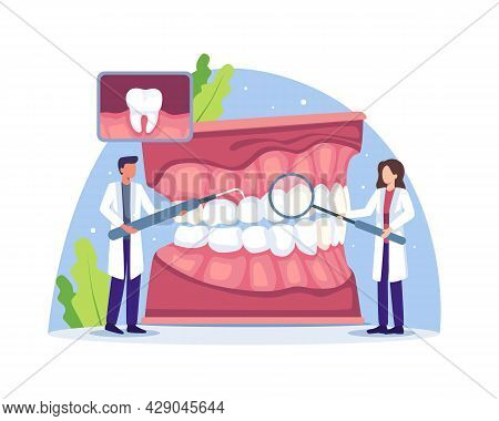 Dental Doctor Diagnosis And Treatment Human Teeth