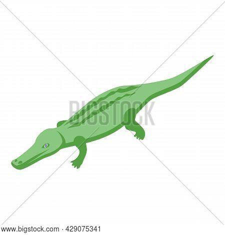 Safari Crocodile Icon Isometric Vector. Alligator Animal. Cute Gator