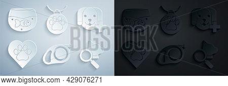 Set Retractable Cord Leash With Carabiner, Veterinary Clinic Symbol, Heart Animals Footprint, Collar