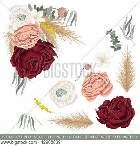 Vector Floral Composition In The Shape Of An Angle. Red Rose, White Chinese Buttercup, Dried Flowers