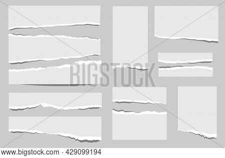 Set Of Paper Of Different Shapes Scraps Isolated On Gray Background
