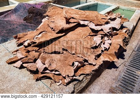Drying Of The Animal Skins In The Tannery In Marrakech On A Sunny Day. Morocco.