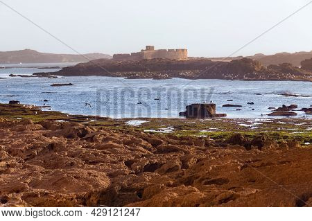 Ancient Fortress On The Volcanic Shore Of The Atlantic Ocean In The Area Of Essaouira In Morocco In
