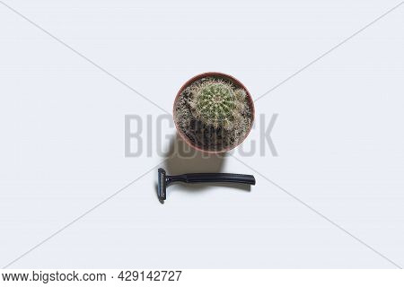 A Single Use Disposable Razor Blade And Spiny Cactus Plant On White Background. View From Above. Cre