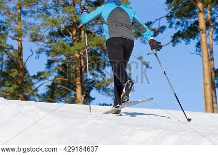 Cross-country Skiing In Sunny Winter Day. Cross Country Skiing, Close-up.