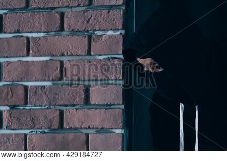 A Burglar Dressed In Dark And Wearing A Leather Coat Smashes A Window At A Residence.