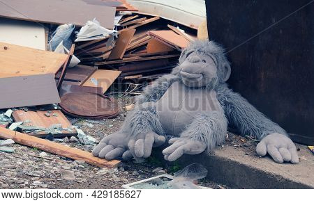 A Soft Old Big Monkey Toy That No One Needs Lies In A Pile Of Rubbish