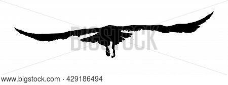 Black Silhouette Birds Isolated On White Background. Falcon, Hawk, Eagle Or Orel. A Large Predator S