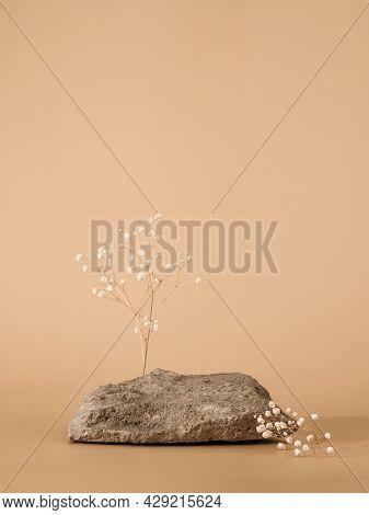 Mockup Geometric Shape Podium. Stone Shape With Gypsophila Flowers Over Pastel Beige Background. Can