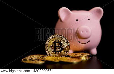 The Bitcoins Stand In Front Of Pink Piggybank. Risk And Wealth Can Happen In Investment Savings Or T
