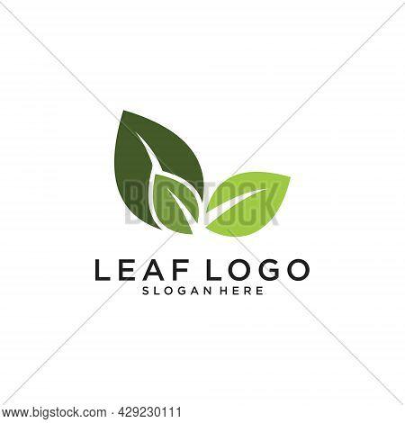 Organic Leaf Vector Logo Design Template, Organic Leaf Icon. Leaf Logo Design
