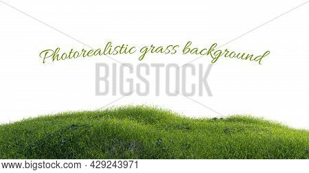 Photorealistic Grass Hill On A White Background, 3d Rendering
