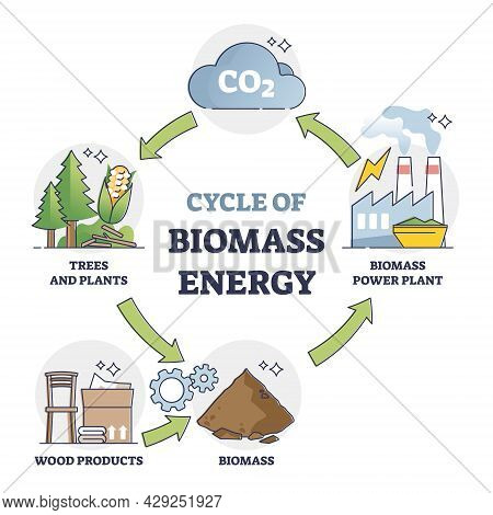 Cycle Of Biomass Energy As Direct Combustion In Power Plant Outline Diagram. Educational Labeled Exp