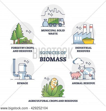 Sources Of Biomass Energy As Alternative Power In Outline Collection Diagram. Educational Labeled Se